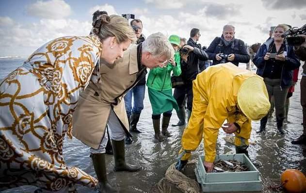 belgija ribe2